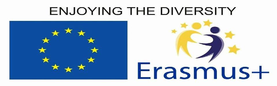 Erasmus960x330